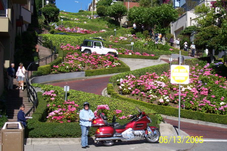 Looking Up Lombard Street..... San Francisco's Crookedest Street